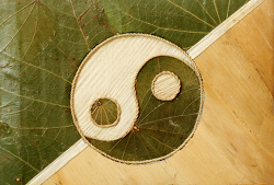 Acupuncture - Ying-Yang
