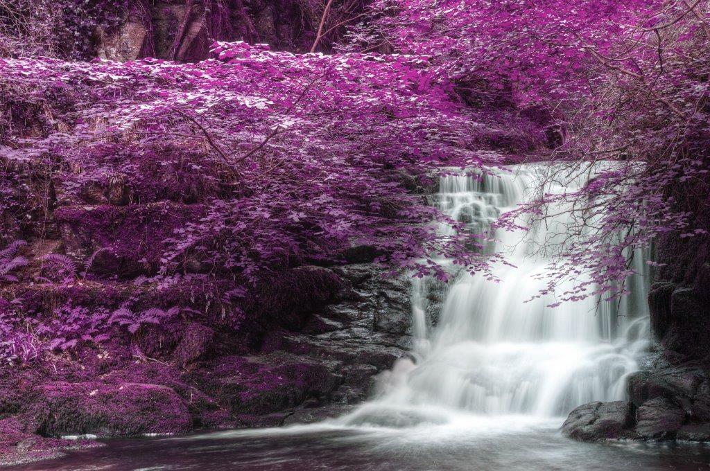 Energetic Health Acupuncture & Oriental Medicine Waterfall